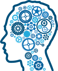 brain gears how to use knowledge