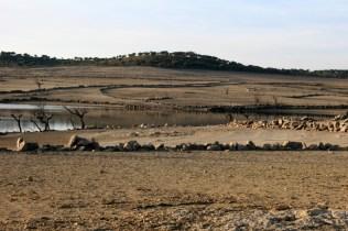 Argusino-al-fondo-pueden-verse-los-esqueletos-de-viñas-y-olivos.-enero13