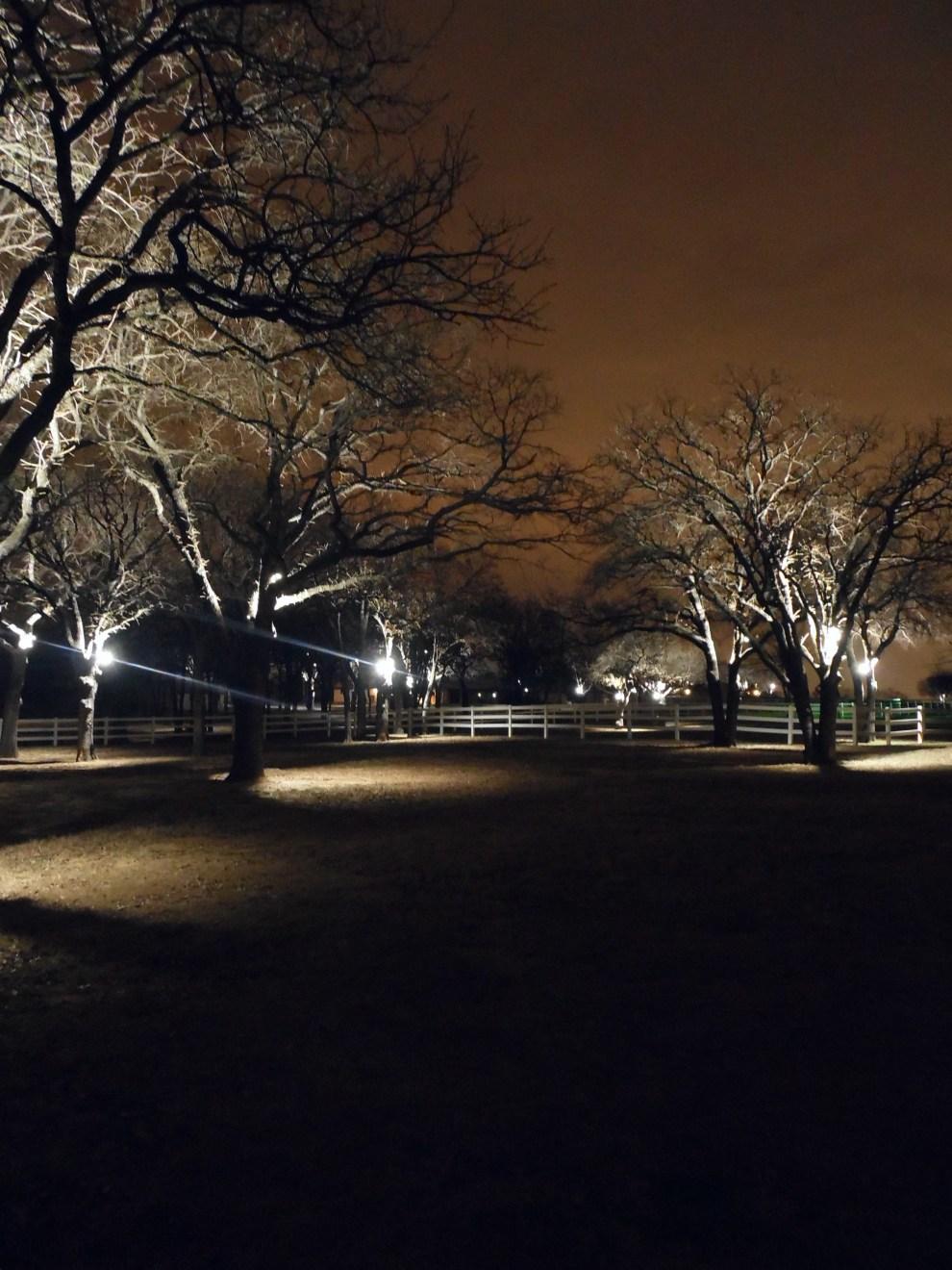 tree lighting TBN 5