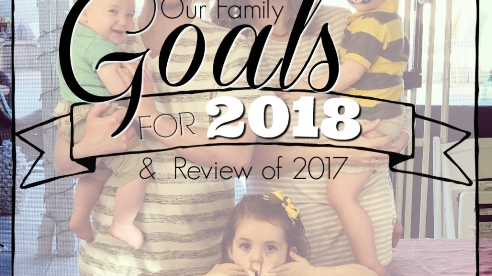 Happy New Year from our family to yours! As we look back at 2017 we see our blessings and look forward to reaching some new goals in the new year.