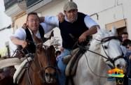 Día de la Luz, caballos14