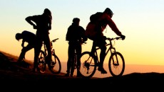 Turismo en bicicleta Arroyomolinos