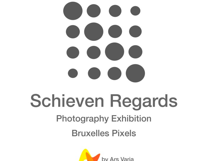 Unconventional perspective : Schieven Regards