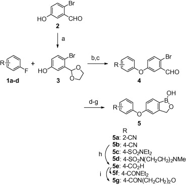 Reagents and conditions: (a) ethylene glycol, p-TsOH, toluene, reflux, 6h ...