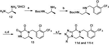 Synthesis of compounds 11d and 11l–t. Reagents and conditions: (a) Boc2O, NaOH, ...