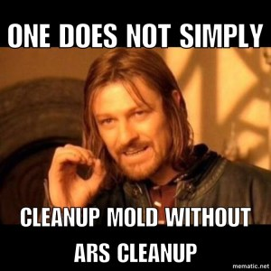 ARS Cleanup Mold