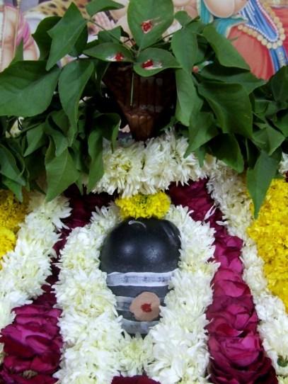 010 Ekabilvam Shivarpanam.JPG