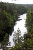 Helvetinjärvi on hyvin pitkä ja kapea. Näyttää ennemmin joelta.