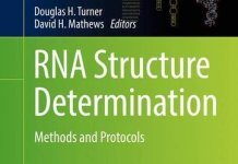 RNA Structure Determination