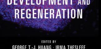 Stem Cells in Craniofacial Development and Regeneration 2013 PDF