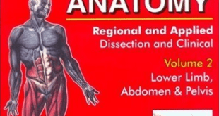 BD Chaurasia's Human Anatomy 4th Edition Volume 2 PDF