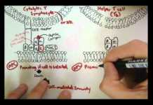 Immunology - Innate Immunity