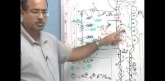Pharmacology - Diuretics - Part 3