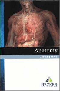 BECKER USMLE Step 1 Anatomy PDF