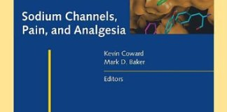 Sodium Channels Pain and Analgesia PDF