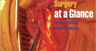 Vascular and Endovascular Surgery at a Glance PDF