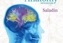 Saladin Human Anatomy 5th Edition PDF