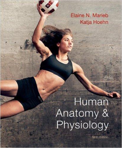 Seeley S Anatomy Physiology 11th Edition Pdf