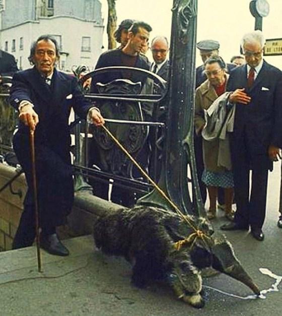 2. Dali passeando um tamanduá (brasileiro?) em Paris - 1960