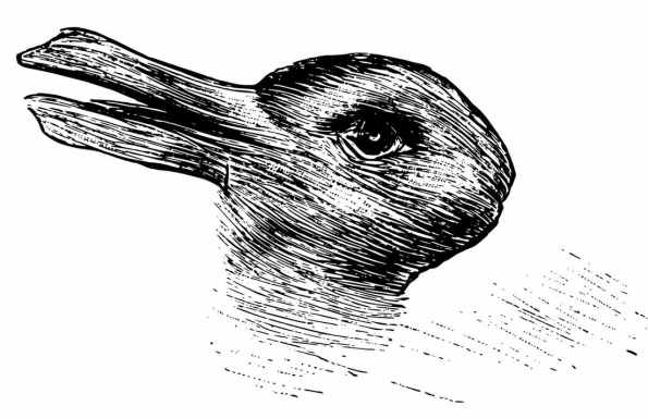canard:lapin - copie