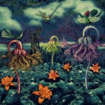 "Haeckel Revisited by Stéphanie Cousin - ""Dimension Upon request"" – Digital Art"