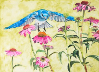 Blue Bird and Cone Flowers
