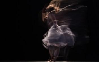 Ples je poezija bez rijeci