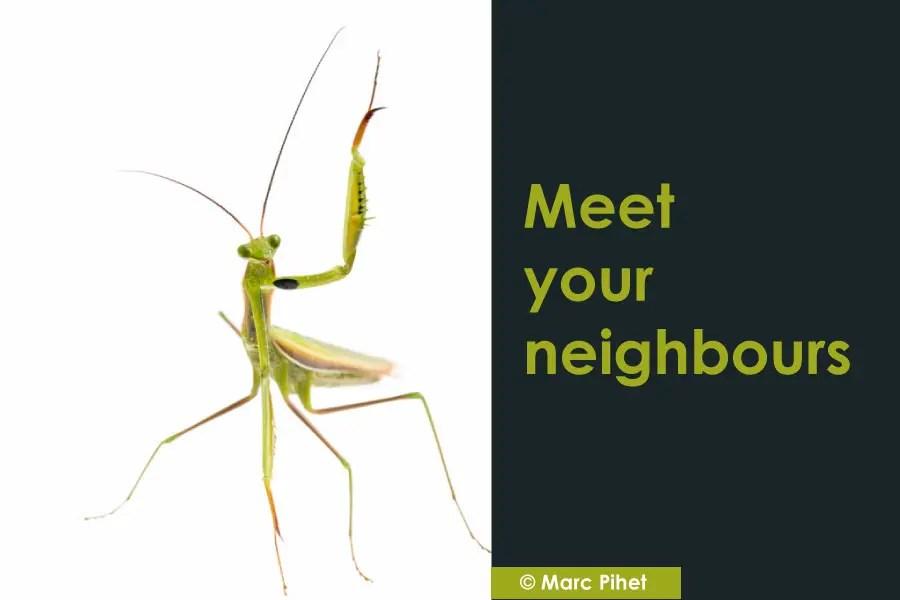 Connaissez-vous le projet Macro / Proxi «Meet your neighbours» ?