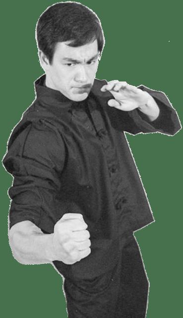 bruce lee kung fu art martial