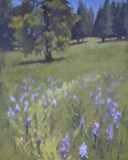 Colors of Autumn, September 2019 members show - Camas Bloom, oil painting by Jean Mailander