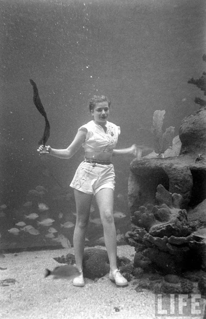 UnderwaterFashionShow2C1947281329