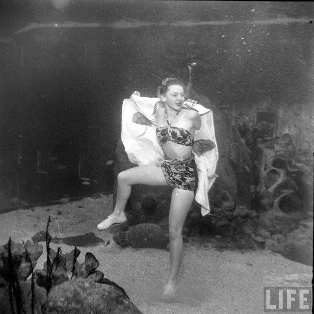 UnderwaterFashionShow2C194728429