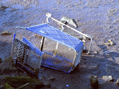 trolley-shopping-cart-beach-water-mud-art-satire-comedy-humor