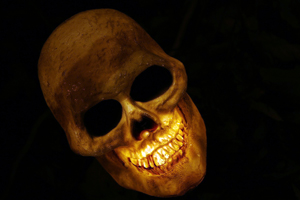 posthumous-art-profits-skull