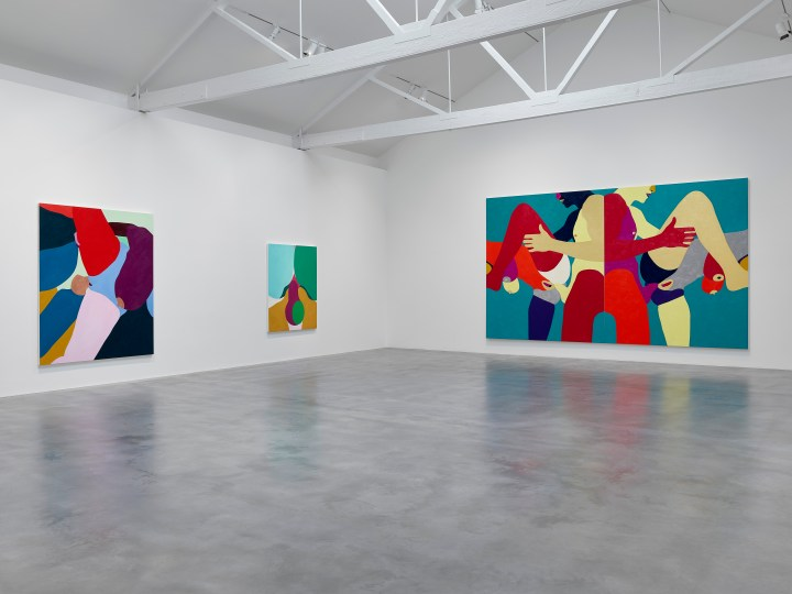 Installation view V1 True Colours_┬® Helen Beard_Courtesy Newport Street Gallery. Photo Prudence Cuming Associates