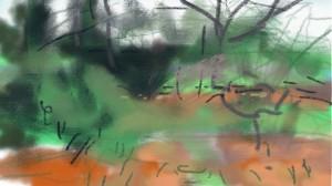 Front Yard Sketch