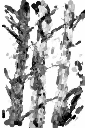 Oil_canvas_birches