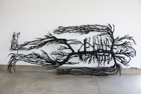 Roxy Paine at Kavi Gupta Gallery