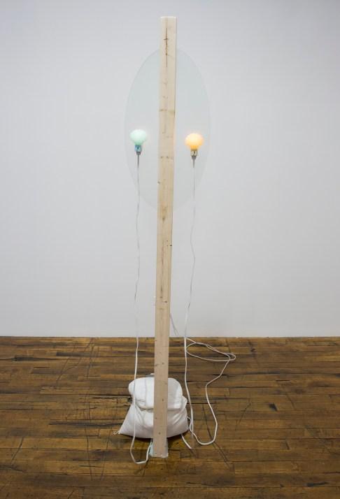 "Lizzie Wright. ""Venus,"" 2014 glass, night light, rocks, faux fur, acrylic paint, extension cords"