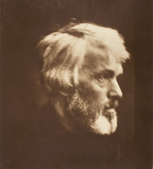 """Julia Margaret Cameron. """"Thomas Carlyle,"""" 1867, printed 1875. The Art Institute of Chicago. Alfred Stieglitz Collection."""