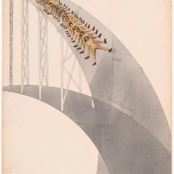 """László Moholy-Nagy,"""" Rutschbahn (Slide),"""" 1923."""