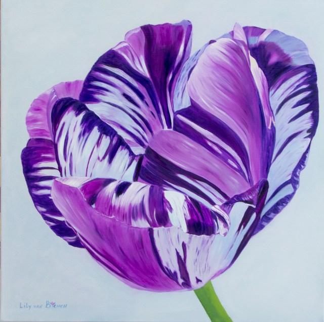 English Virus Violet Tulip