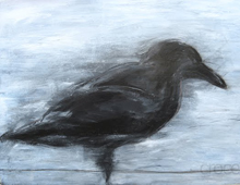 Crow #1