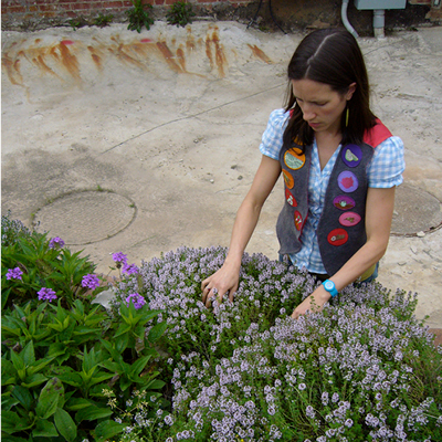 A photograph of a white woman with brown hair reaching into a bed of flowering thyme.