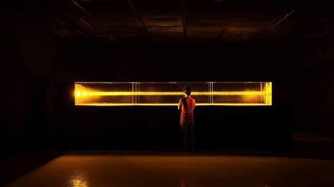Quark IV by Eiji Sumi