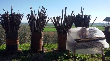 Sestini e Corti - wooden sticks