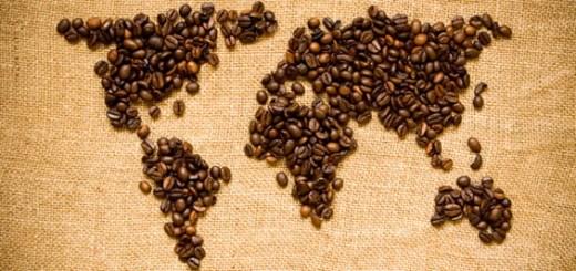 Sortimente speciale de cafea de origine - Cafea Gourmet