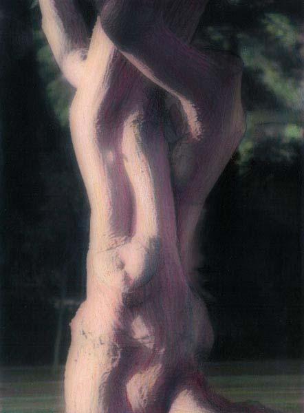 Freyda Miller The Naked Tree #9