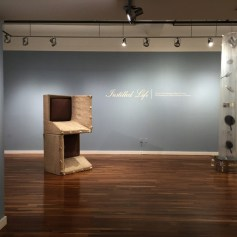 """Installation view of 'Instilled Life"""" at the Sweeney Art Gallery. Works by Carter Potter and Luciano Perna. Photographs courtesy of UCR ARTSblock"""