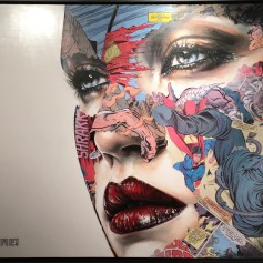 LA CAGE, ICI! Sandra Chevrier ©2016 Thinkspace Gallery, Photo credit- JulieFaith, All rights reserved.
